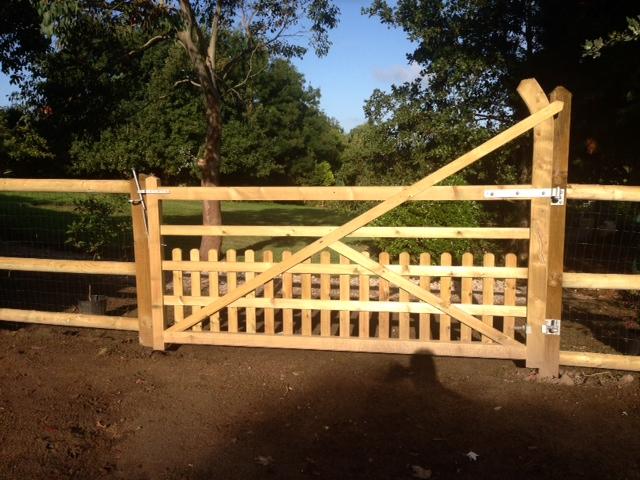 Custom gate for small dog